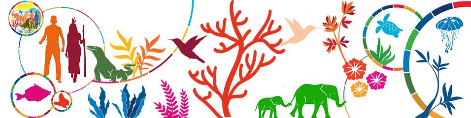 Conservation de la Biodiversité